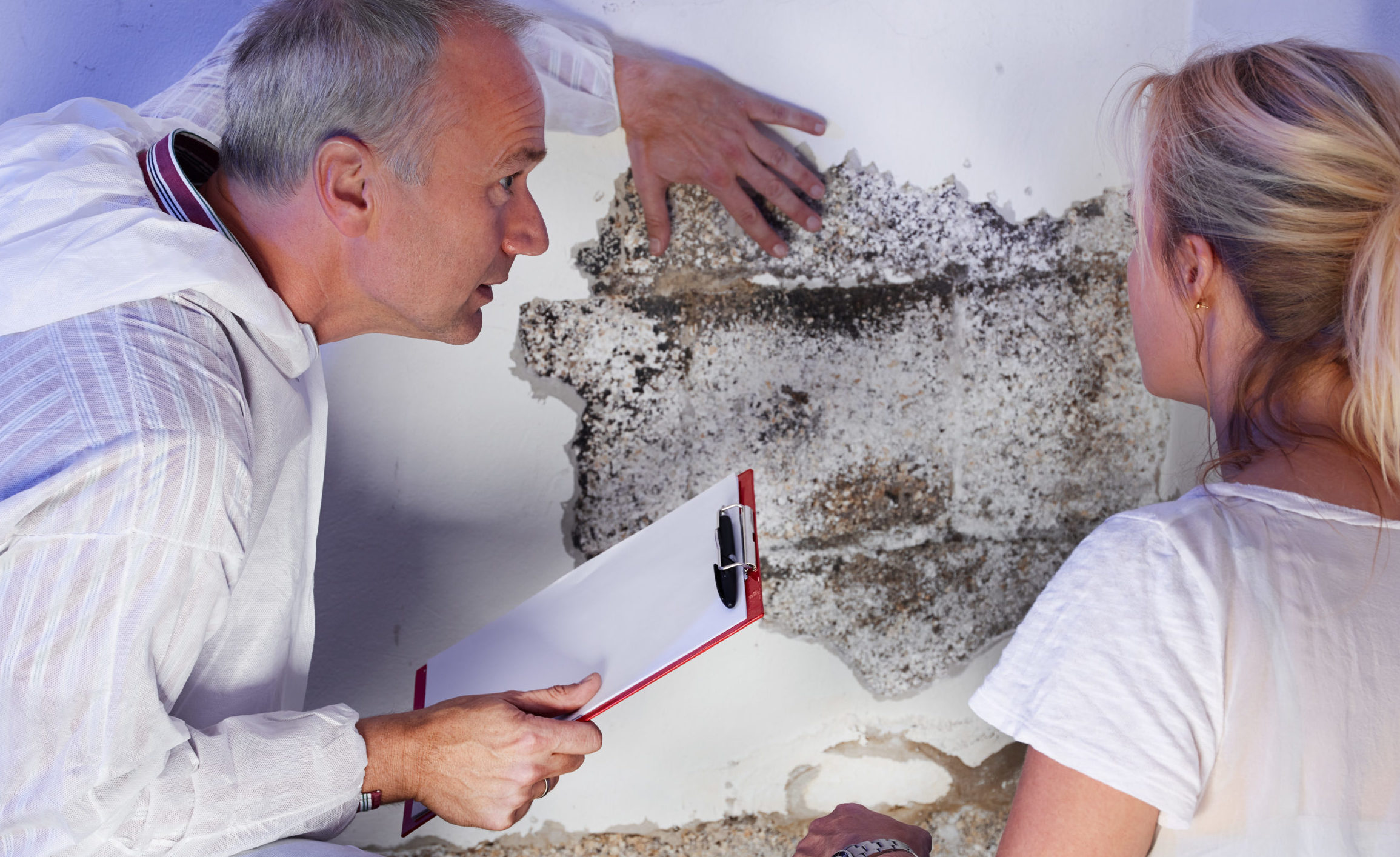 How can tenants and landlords prevent damp and mould?
