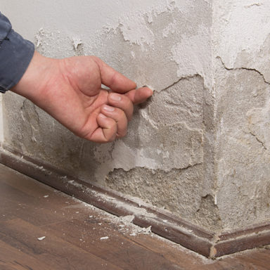 Is rising damp covered by buildings insurance