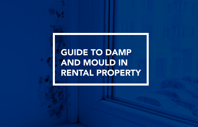 What causes damp and mould in a house?